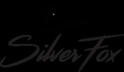 Клинкерная плитка SilverFox