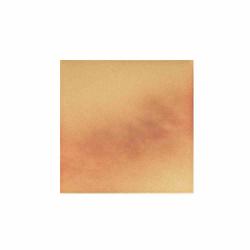 Cerrad Jesienny Lisc/Autumn Leaf 5296 плитка напольная 30×30